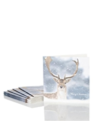 10 Photo Stag Christmas Multipack of Cards