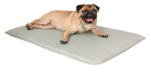 Cool Bed 3 White Cooling Pet Bed Small-17 In x 24
