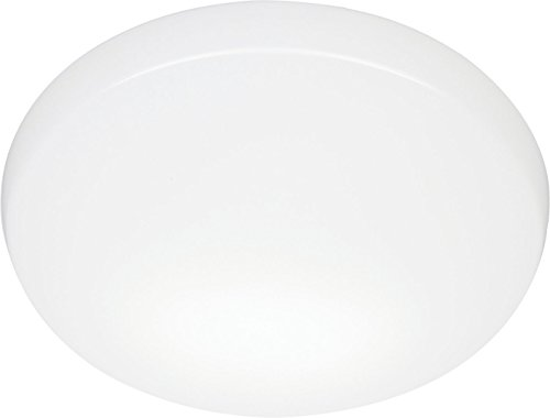 Lithonia Lighting Dfmlrl11 M4 11-Inch Replacement Lens For Led Low Profile Round Flush Mount, White
