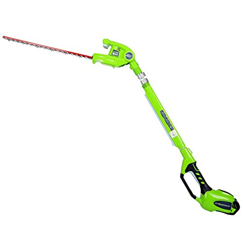GreenWorks 22272 G-MAX 40V Li-Ion Pole Hedge Trimmer with 2ah battery and charger
