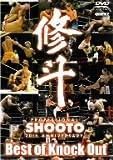 修斗 THE 20th ANNIVERSARY Best of Knock Out [DVD]