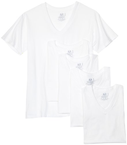 31d271qJKEL Fruit of the Loom Mens V Neck Tee 5 Pack, White, Small