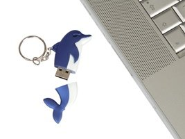 USB Flash memory stick key ring. Dolphin 2GB Blue from LANDX