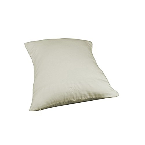 Bedvoyage Home Hotel Decorative Bedding Accessories Pillowcase - Travel - Ivory