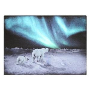 """Ohio Wholesale 39108 - 20"""" X 14"""" X 1"""" - """"Polar Bears Northern Lights"""" Battery Operated Led Lighted Canvas (Batteries Not Included)"""