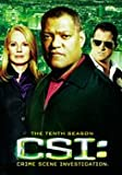 CSI: Crime Scene Investigation - Season 10