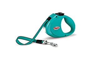 Flexi City Retractable Belt Dog Leash, One Size, 6-Feet Long, Supports up to 77-Pound, Turquoise