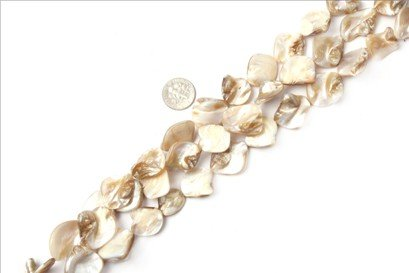 15x20mm freeform cream white Sea shell beads strand 15