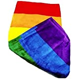Gay Rainbow Sisters Gay Pride Rainbow Beach Towel