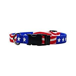 Yellow Dog Design Standard Collar, Medium, Americana