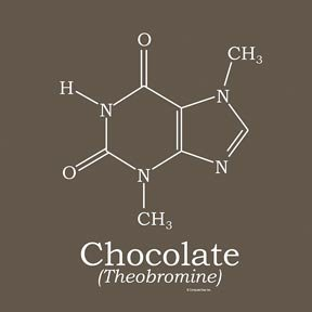 Chocolate Molecule T-shirt
