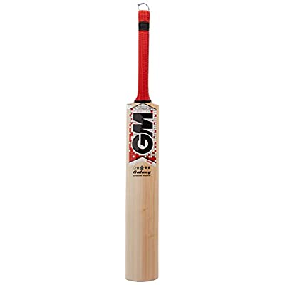 GM Galaxy English Willow Cricket Bat, Short Handle