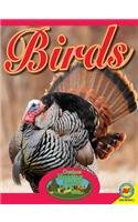 Birds (Outdoor Hunting Guide)