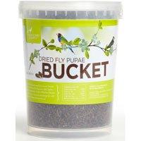 Cheap Pacific Bird & Supply Co. Dried Fly Pupae Bucket (B008EXGC8E)