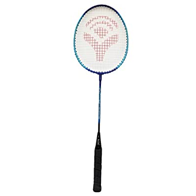 Wilson Blx Pro Staff 95LS Racquet