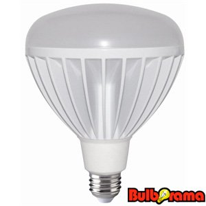 Full Spectrum Led Bulbs
