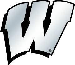 NCAA Wisconsin Badgers Chrome Automobile Emblem