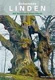 Bedeutende Linden: 400 Baumriesen Deutschlands