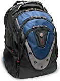 Swiss Gear Ibex 17-Inch Notebook Backpack