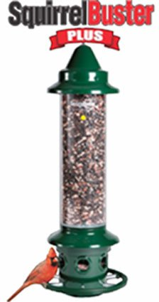 Squirrel Buster Ultimate Bird Feeder