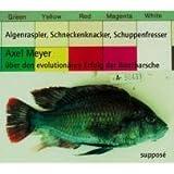 Algenraspler, Schneckenknacker, Schuppenfresser: Axel Meyer über den evolutionären Erfolg der Buntbarsche