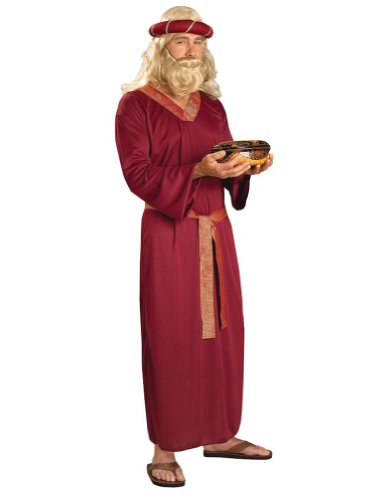 Adult-Costume Wiseman Adult Costume Halloween Costume - Most Adults