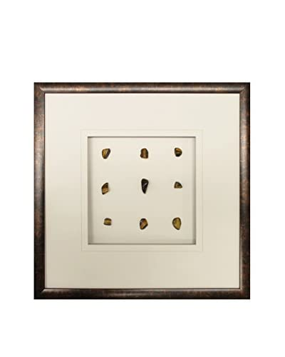 Star Creations Golden Tiger Eye Shadowbox Art