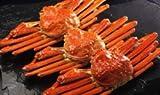 本ズワイガニ姿 天然 たっぷり蟹味噌の特大サイズ500gX3尾入 総重量1500g 3名分
