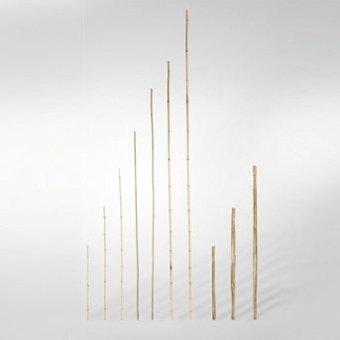 Videx-Bambusrohr-Pflanzstab, unbehandelt, Ø 6-8mm, Länge 90cm, 7 Stk