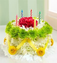 Flowers by 1800Flowers - Birthday Flower Cake - Green and Yellow