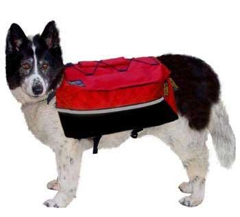 Outward Hound Quick Release Backpack Red Extra Large