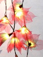 Stars String Light Set (Green&Red Color) with White Cord for Birthday Party Decorating, Garden Party Decorations or Wedding Lights Product of Thailand
