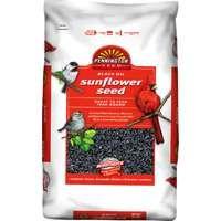 Cheap Black Oil Sunflower Seed Wild Bird Food, 50lb (B0032ENHAG)