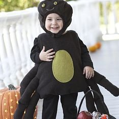 Pottery Barn Kids SPIDER costume