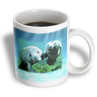 Manatees Looking at You Mug, 11-Ounce