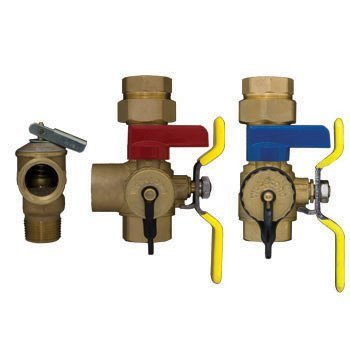 Rheem RTG20220 Tankless Service Valve Kit with Relief Valve
