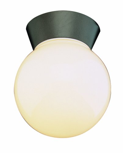 Trans Globe Lighting 4850 BK 7-Inch 1-Light Outdoor Flushmount, Black