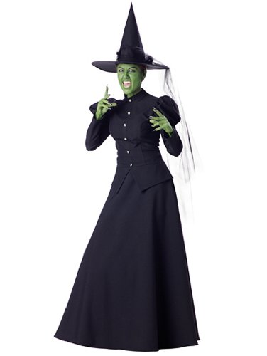 Wicked Witch Traditional Witch Costume Long Black Dress Witch Hat