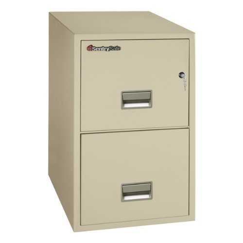 SentrySafe Sentry Safe 2-Drawer Fire and Water-Resistant Vertical Legal File, 20inch W x 31inch D, Dock-to- at Sears.com