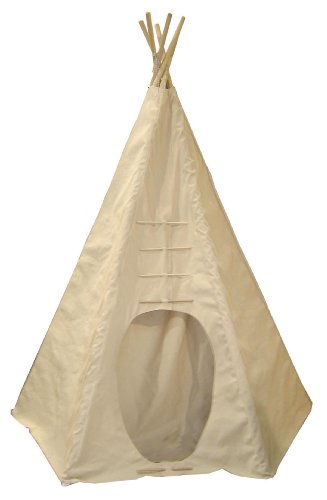 Teepee Or Tipi