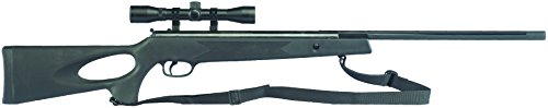 Winchester Model 1052SS 0.22-Caliber Break-Barrel Pellet Rifle by Daisy Outdoor Products