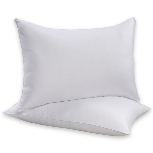 Beautyrest Sneeze Less Queen Size Twin Pack Bed Pillow
