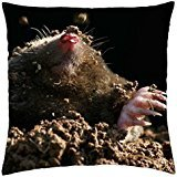 mole-in-the-hole-throw-pillow-cover-case-18