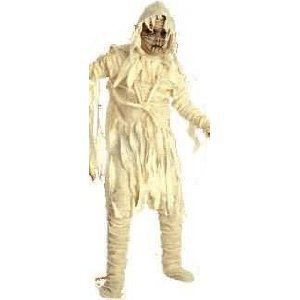 Child Large 12-14 for 8-10 Yrs. - Universal Studios MUMMY Costume