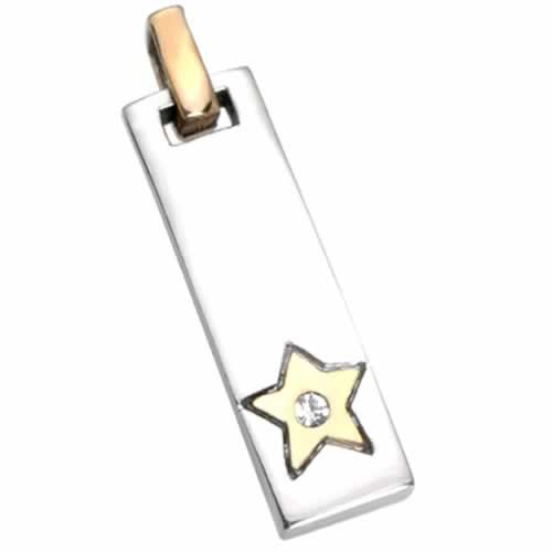 Stainless Steel Pendant with Jeweled Gold PVD Star (Stainless Steel Chain Included)
