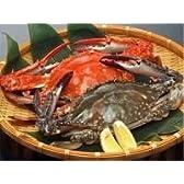 愛知県産 活け〆 渡り蟹(ガザミ・ワタリガニ) メス 1kg 3~4匹