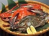 愛知県産 活け〆 渡り蟹(ガザミ・ワタリガニ) オス 1kg 2~4匹