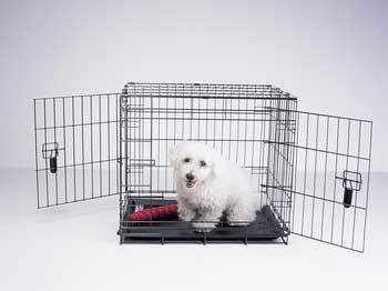 Four Paws Dog Crate front-1072826
