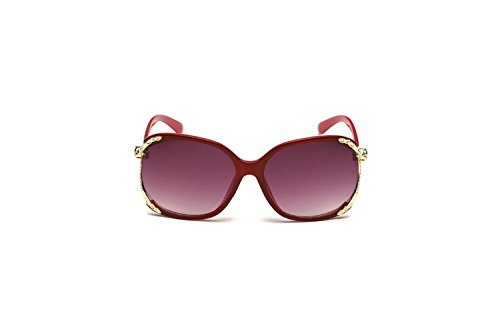 Darkey Wang Fashion Women's Unique Wild fox Hollow Metal Box Large Sunglasses(Red) (Hfp Rims compare prices)