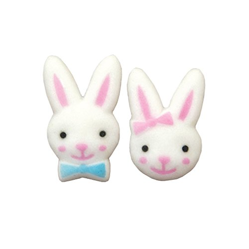 Easter Bunny Boy and Girl Sugar Decorations Cookie Cupcake Cake 12 Count